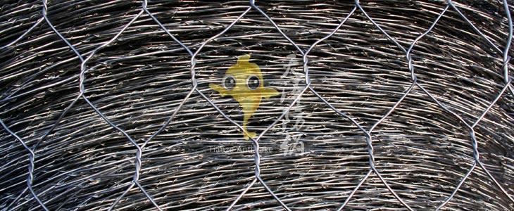 石笼网、格宾网、六角网